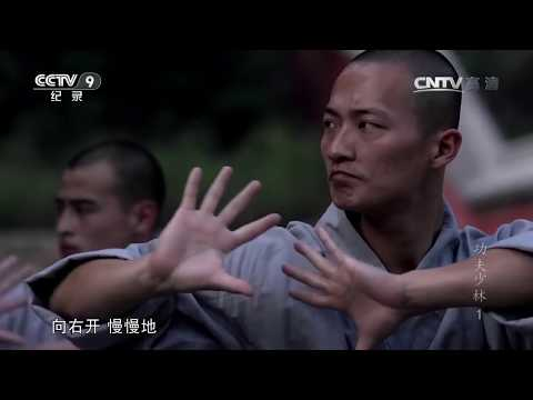 KUNG FU SHAO LIN (1) - The Secret Teachings (CCTV Documentary w. English subs) 功夫少林 第一集 绝学