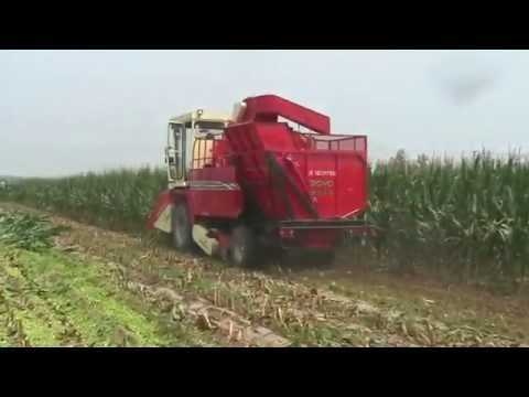 corn harvester from SINO-AGRI BOYO
