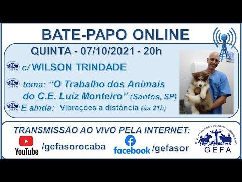 Assista: Bate-papo Online - c/ WILSON TRINDADE (08/10/2021)