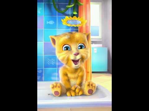 Con mèo hát bai quê hương tươi đẹp