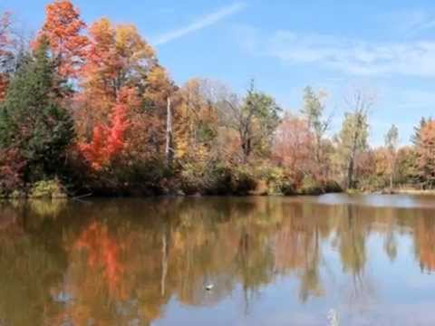 Autumn in Michigan (music is courtesy of Stewart Francke)