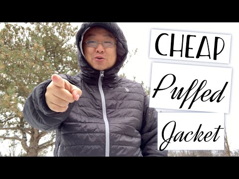 Inexpensive US Polo Assn Hooded Puffer Jacket Review