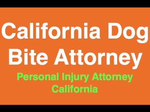 California Dog Bite settlement | Sacramento Dog Bite settlement Attorney