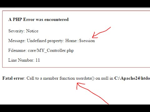 CI problem : Fatal error Call to a member function userdata()