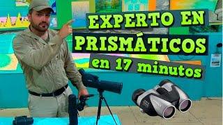 Experto en Prismáticos en 17 minutos