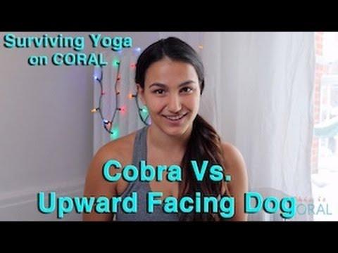 Cobra Pose vs. Upward Facing Dog - YouTube