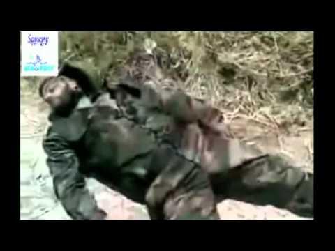 البطل الخالد حافظ الاسد يقراء تاريخ اليوم 2011 منذ عام 1981