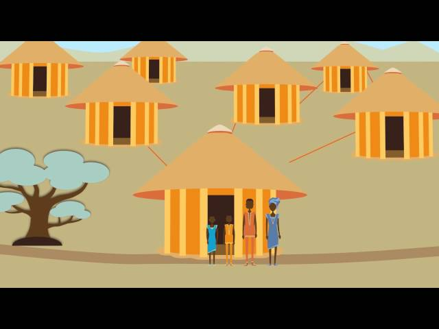 Reducing the Burden of Malaria: How Indoor Residual Spraying Works (Francais)