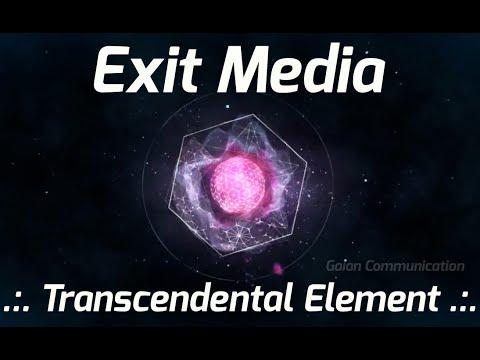 Exit Media .:. Transcendental Element .:. Gaian Communication (Terence McKenna)