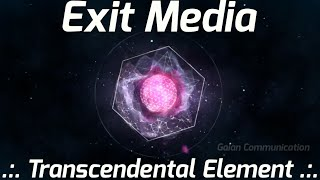 exit media transcendental element gaian communication terence mckenna