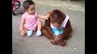 子どもと異なる動物面白い動物と子供