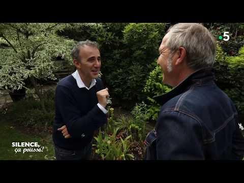 Visite de Jardin : le jardin d'Elie Semoun