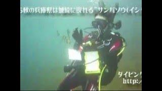 ダイビングスクールココモ( http://cocomo.jp )では、春から秋にかけ...