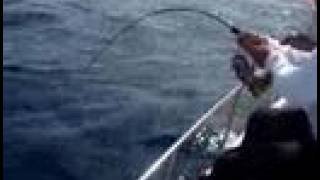 Pescaria dourado em alto mar