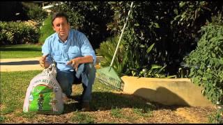 The Garden Gurus - What to Do in Your Garden This Week