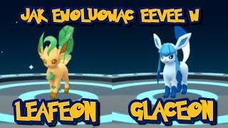 SHINY GLACEON I LEAFEON! JAK EWOLUOWAĆ? SUPER SPOSÓB!