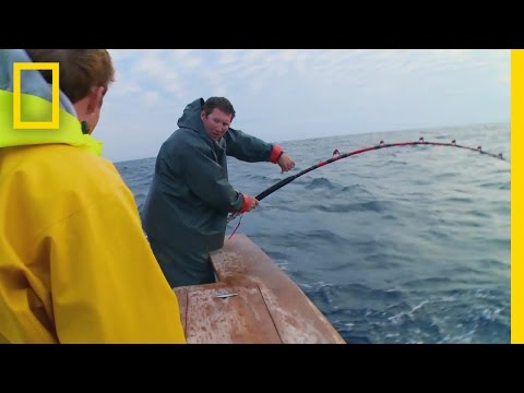 Catch Of The Week - Reels Of Misfortune | Wicked Tuna: Outer Banks