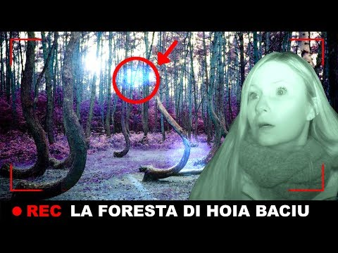 HAUNTED FOREST | GHOST HUNTING IN HOIA BACIU