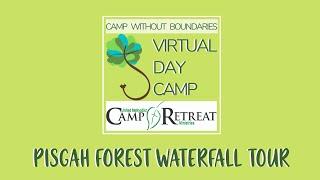Pisgah Forest Waterfall Tour