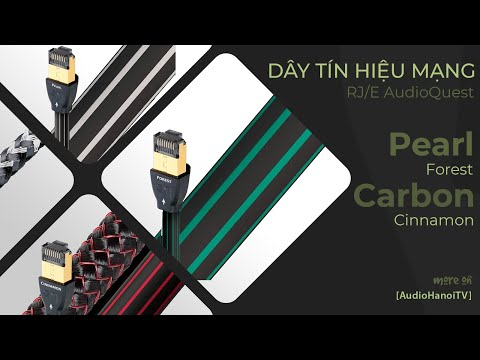 [AudioHanoiTV] Số 95: Review Dây tín hiệu mạng RJ/E AudioQuest Pearl, Forest, Cinnamon, Carbon