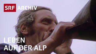 Alpwirtschaft im Wallis (1975) | Leben auf der Alp in der Schweiz | SRF Archiv