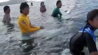 BIKINI GIRLS: ハワイサーフィン,アラモアナボウルズ,GO-NAMINORIセッション2012