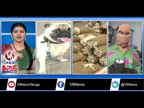 Tax On Pets | Cotton Price | GST Impact On Wedding | Air Force Plane Land On Highway | Teenmaar News