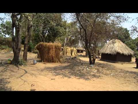 A WALK THROUGH THE VILLAGE IN MFUWE, ZAMBIA (Africa).MOV