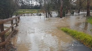 Wild weather causes flooding in Auckland and Coromandel