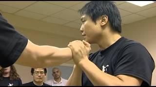 Wing Chun Masterclass Leo Au Yeung streaming