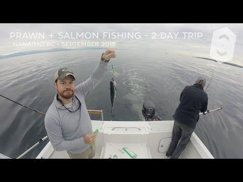 Prawn And Salmon Fishing Five Fingers - Nanaimo BC - September 2018