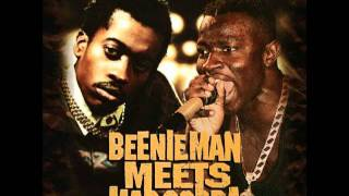 Beenie Man-Once a year