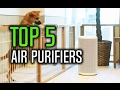 ▶️ Best Air Purifier in 2017!