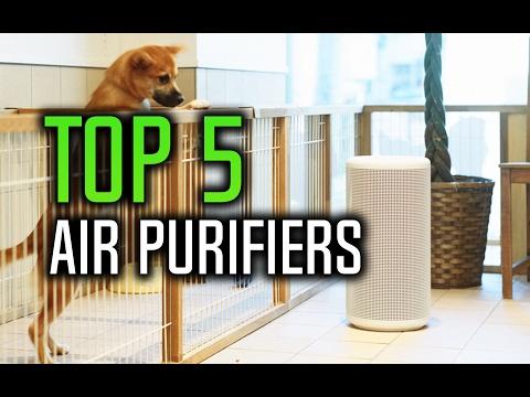 ▶️ Best Air Purifier in 2017!