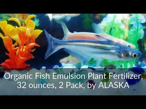 Organic Fish Emulsion Plant Fertilizer 32oz 2 Pack by ALASKA