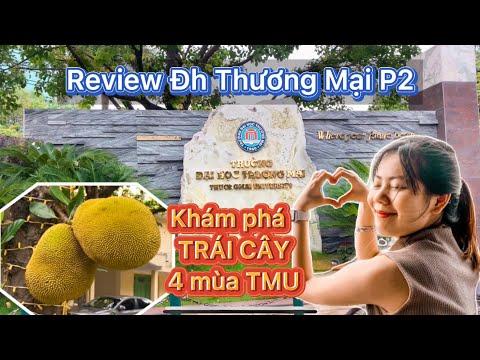 Câu chuyện QUẢ MÍT và Review Trường Đại học THƯƠNG MẠI (TMU) P2 | Lyula