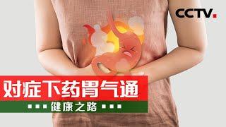 《健康之路》 20210805 对症下药胃气通| CCTV科…