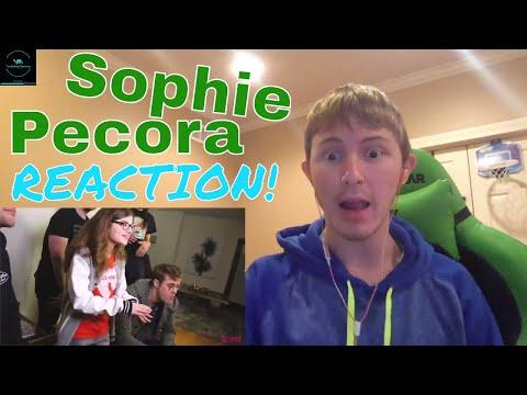 Murder of Sophie Lancaster