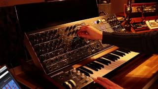Arturia MatrixBrute - Just Sound No Talk - Part 2