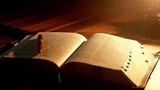 성경 통독(갈라티아 신자들에게 보낸 서간 4-6) - …