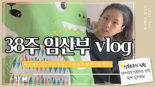 [vlog] 출산임박 38주 임산부 브이로그 ㅣ초점책 …