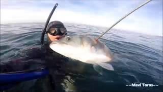 Levrek 6.3 kg seabass hunting Mavi Toros