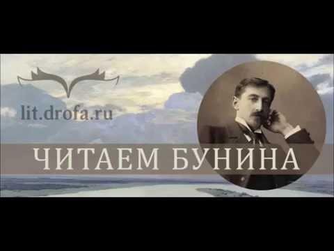 Изображение предпросмотра прочтения – ДарьяЗолотухина читает произведение «Высоко полный месяц стоит...» И.А.Бунина