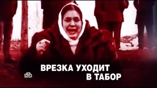 "ЧП. Расследование.  ""Врезка уходит в табор"" от 22.04.2016"