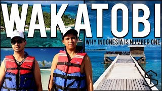 Why Indonesia Is Number One