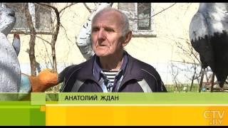 Животные, герои мультфильмов и ручеек: пенсионер из Минска создал зоопарк из пенопласта