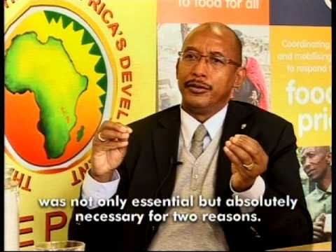 What is the NEPAD Planning and Coordinating Agency?