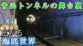 【日本最深】青函トンネル記念館 竜飛斜坑線に乗ってきました。