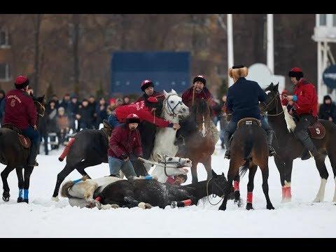 Кровавое побоище на Московском ипподроме ?!!! Жестокий вид конного спорта / Что происходит ?
