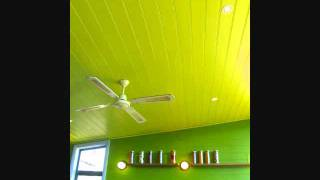 Sharks Keep Moving - Lime Green Cafe
